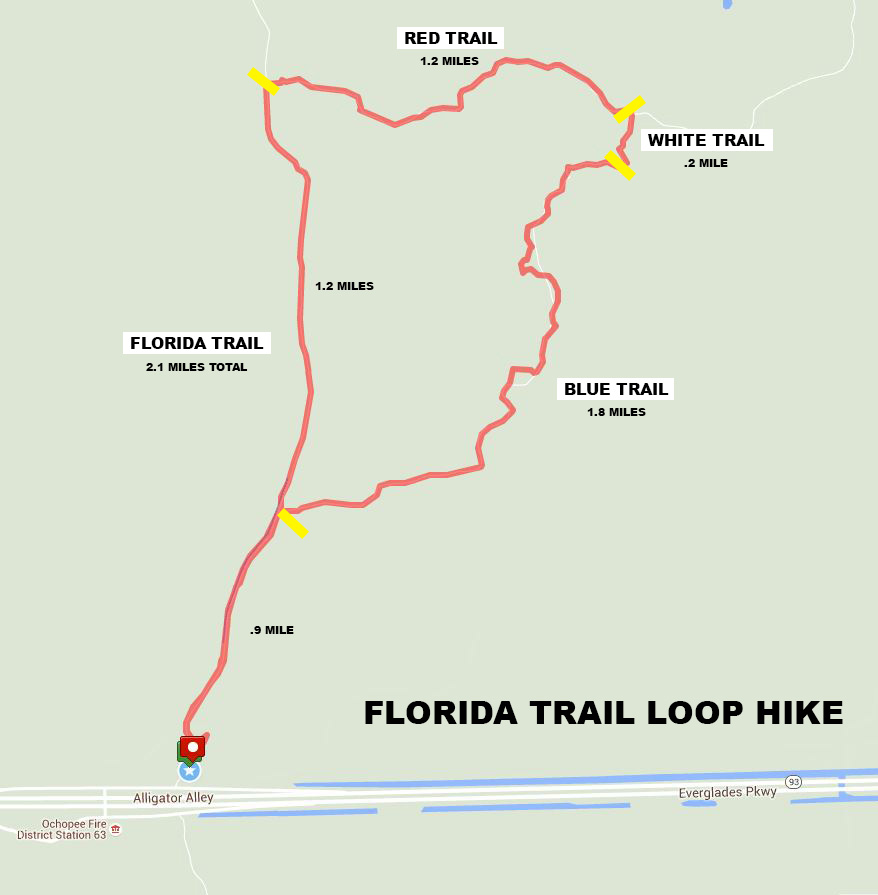 Big Cypress National Preserve Florida Trail: Map Of Florida Trail At Usa Maps