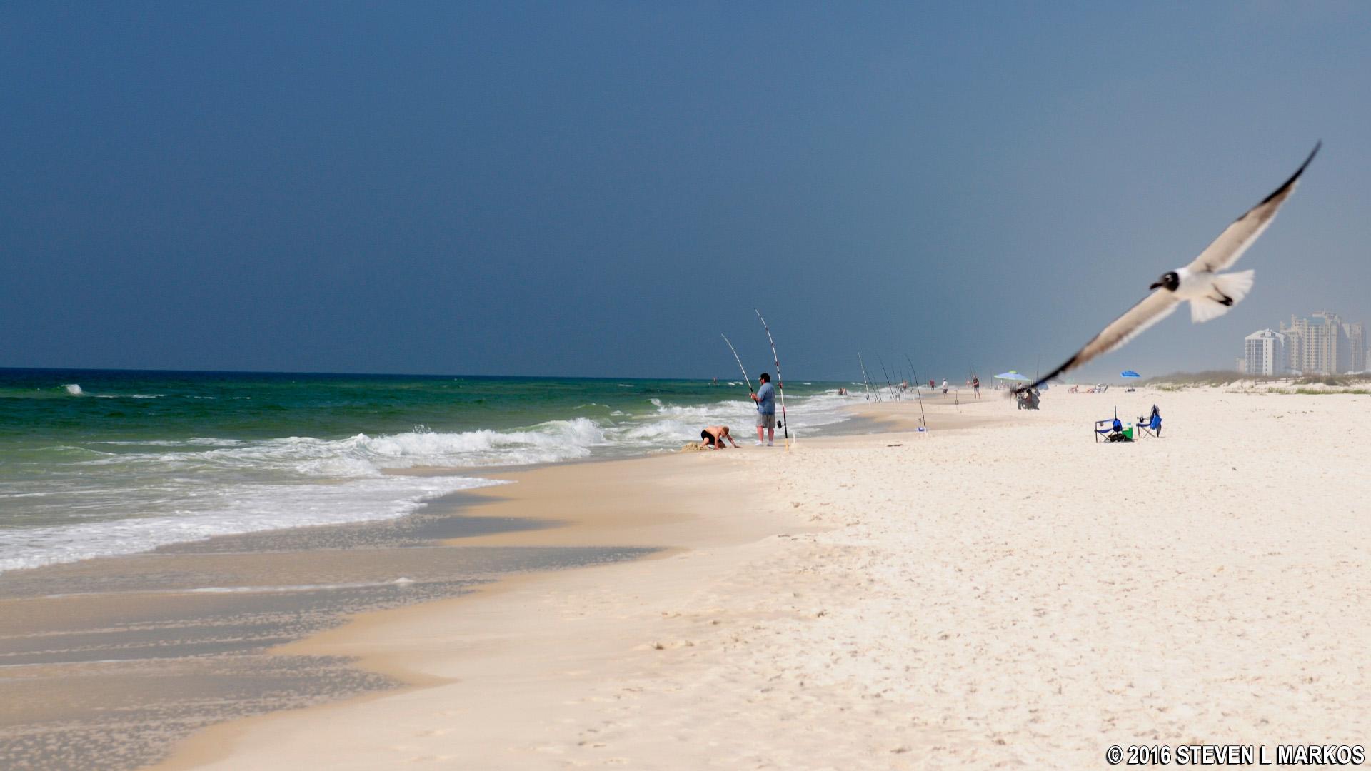 Gulf Islands National Seas Florida