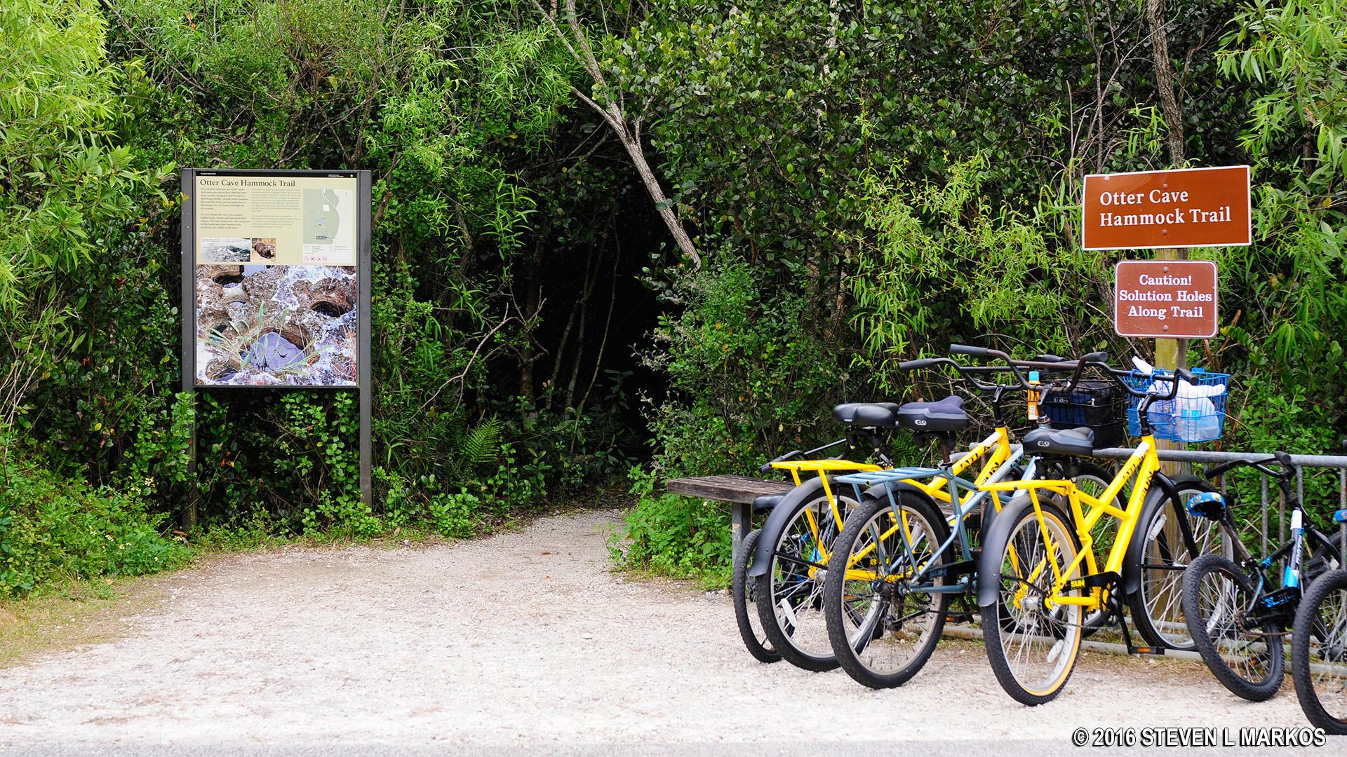Hammock trails