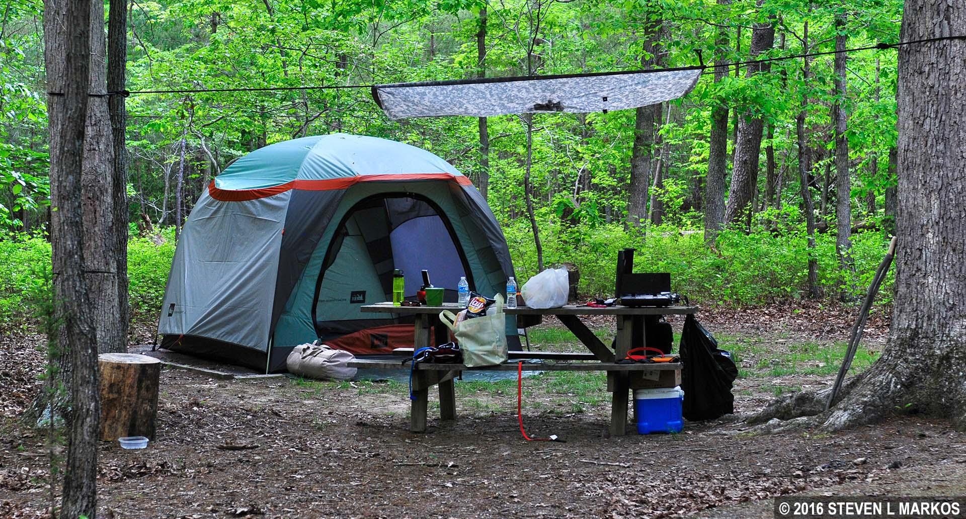 Tent c&ing at the Oak Ridge C&ground at Prince William Forest Park & Prince William Forest Park | OAK RIDGE CAMPGROUND |