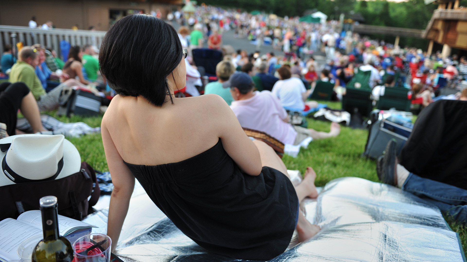 Picnicking From The Lawn Seats During A Concert At Filene Center Photo By W